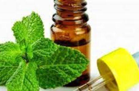 علاج الشخير بالأعشاب