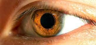 احذر أمراض خطيرة تصيب العيون